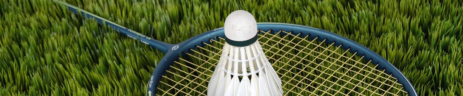 Ogólnopolska Olimpiada Młodzieży w badmintonie